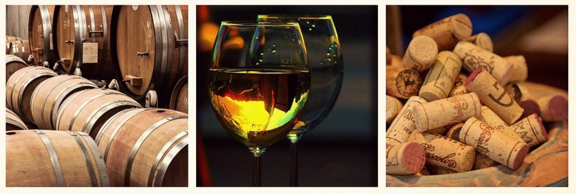 Wijnproeverijen en wijnverkoop